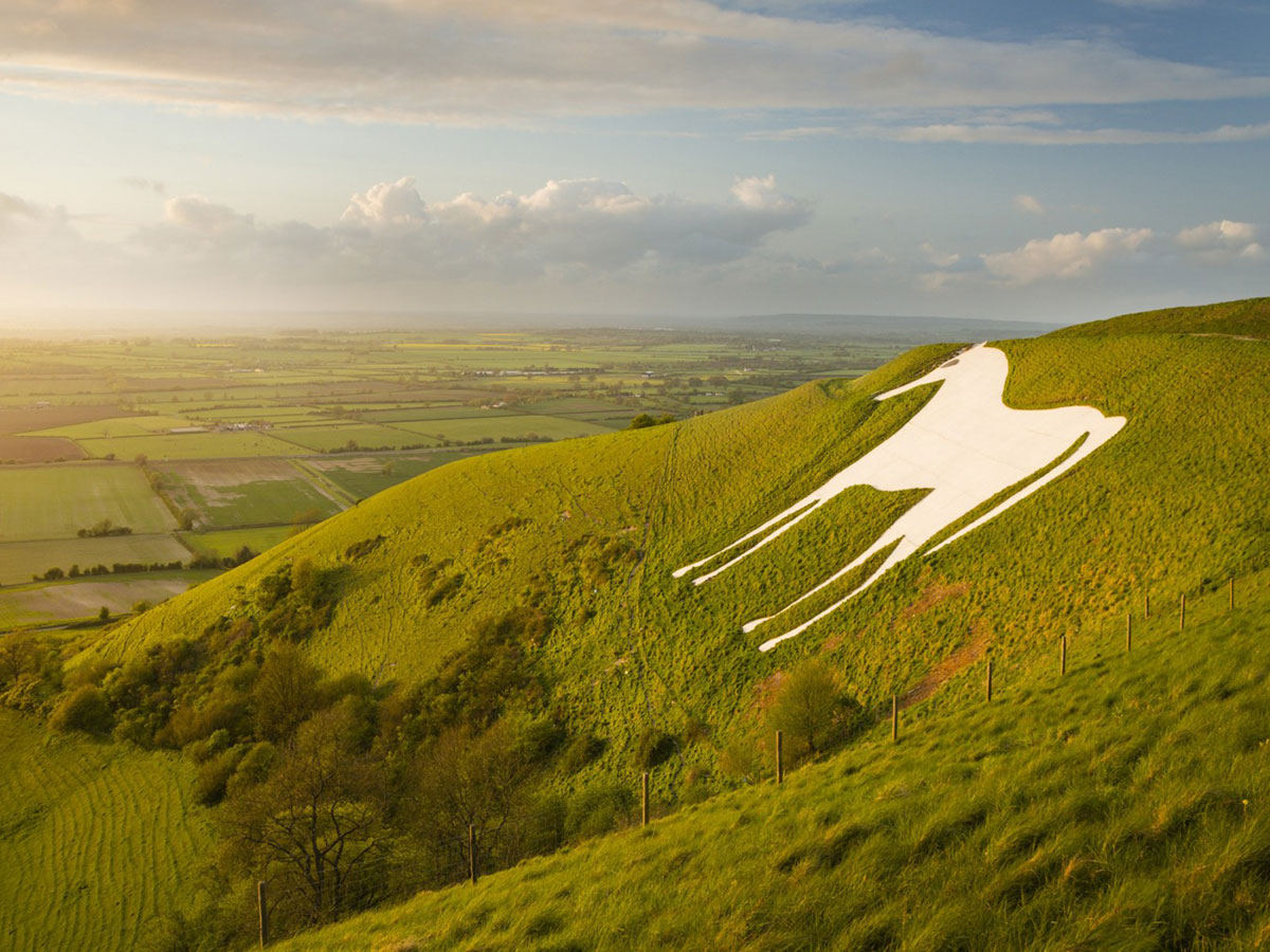 the White Horse at Westbury Wiltshire
